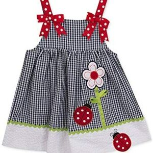 Baby Girls' Gingham Seersucker Ladybug Dress- Navy